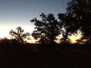 Dawn in Central Texas